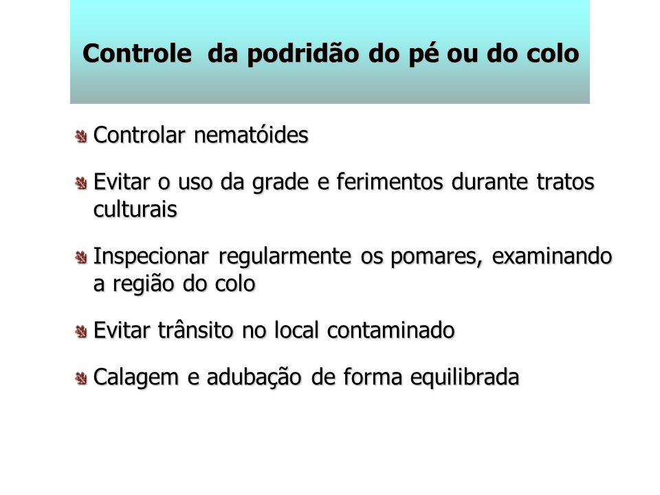 Controle da podridão do pé ou do colo