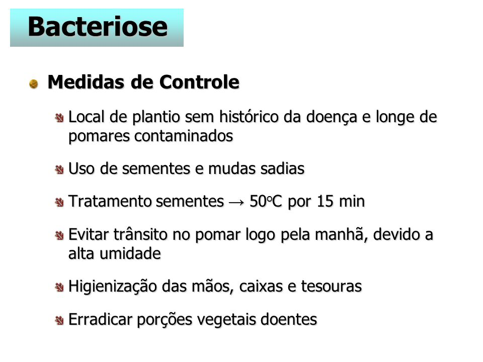 Bacteriose Medidas de Controle