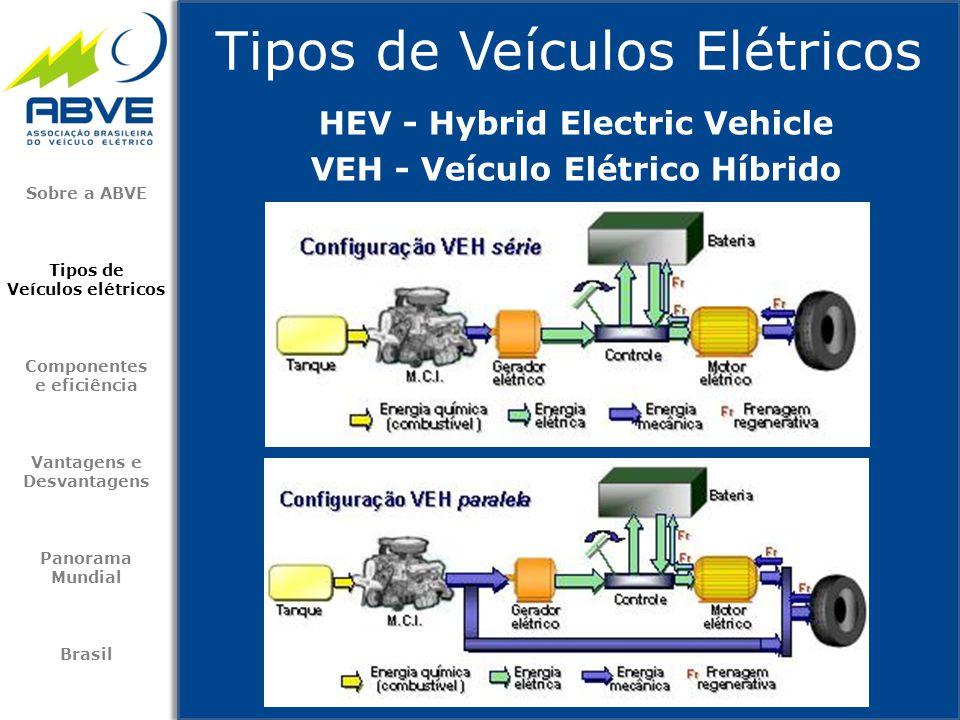 Tipos de Veículos Elétricos