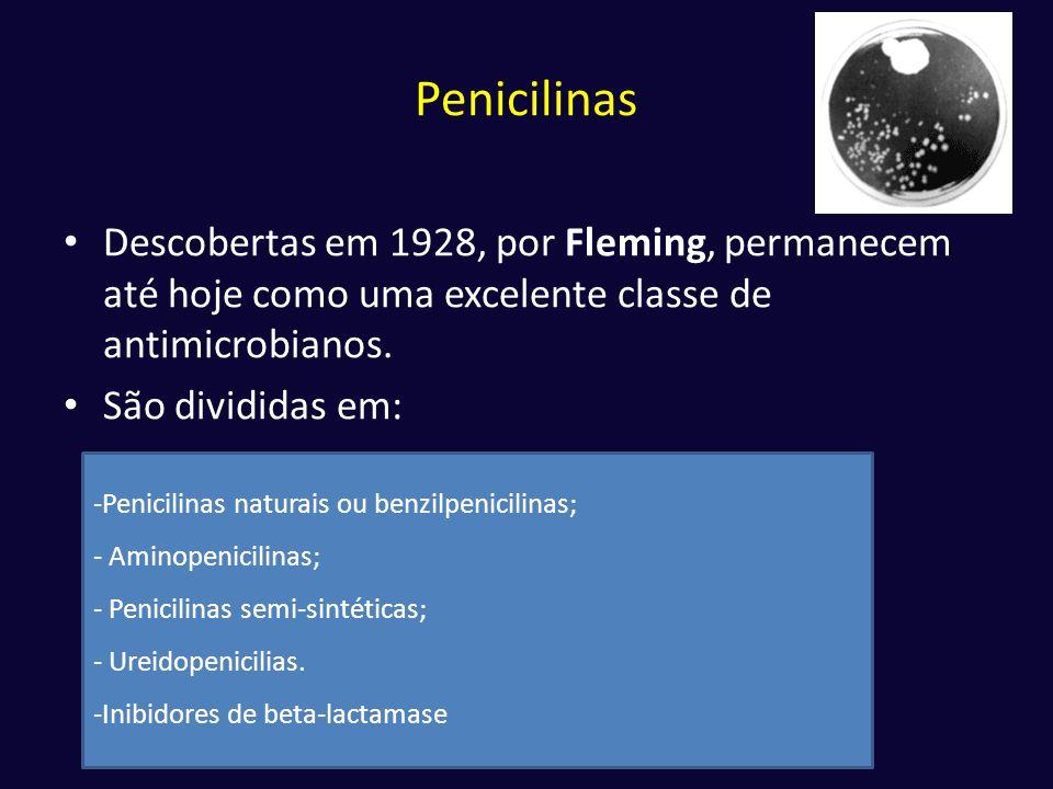 Penicilinas Descobertas em 1928, por Fleming, permanecem até hoje como uma excelente classe de antimicrobianos.