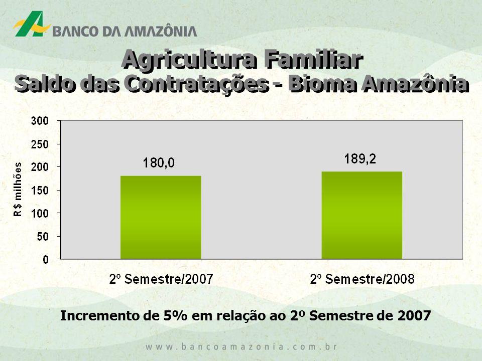 Agricultura Familiar Saldo das Contratações - Bioma Amazônia