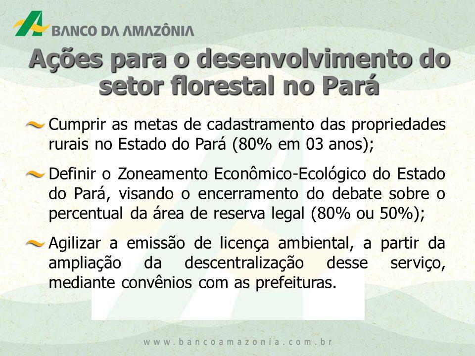 Ações para o desenvolvimento do setor florestal no Pará