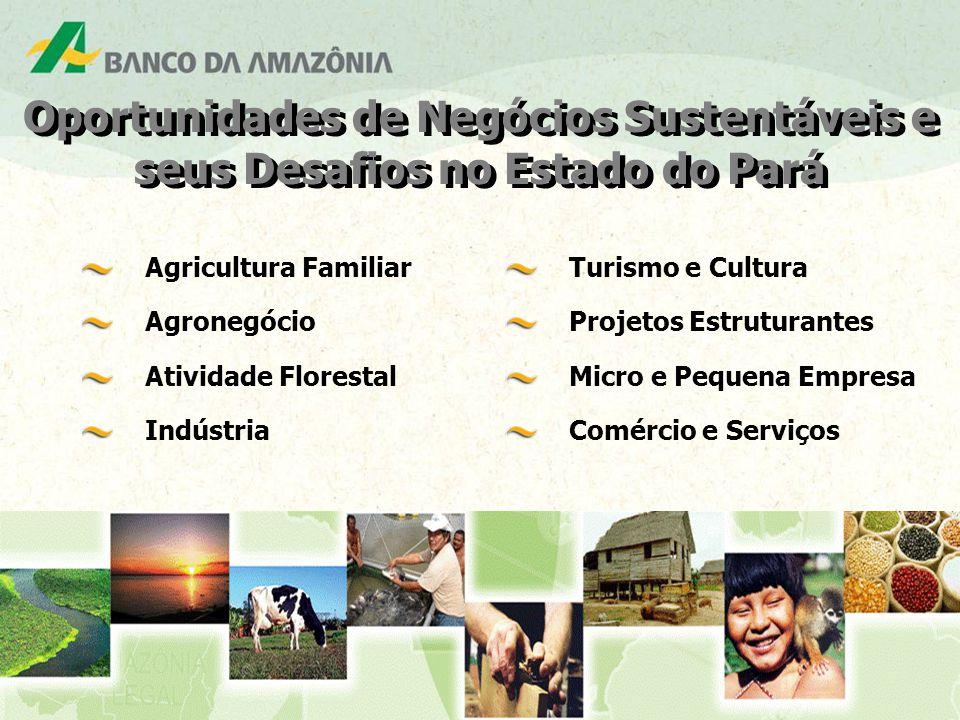 Oportunidades de Negócios Sustentáveis e seus Desafios no Estado do Pará