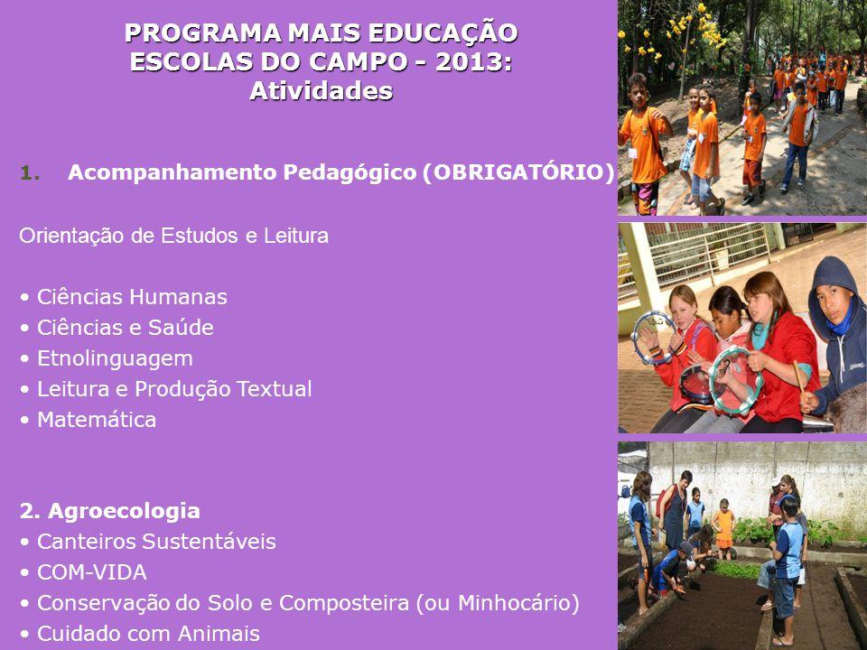 PROGRAMA MAIS EDUCAÇÃO ESCOLAS DO CAMPO - 2013: Atividades