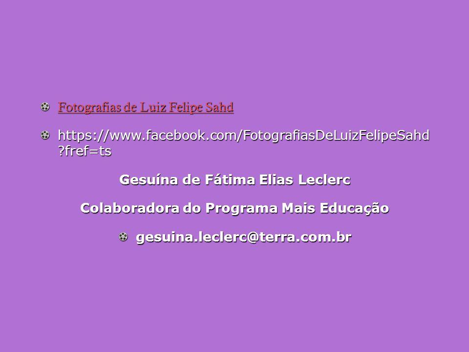 Gesuína de Fátima Elias Leclerc Colaboradora do Programa Mais Educação