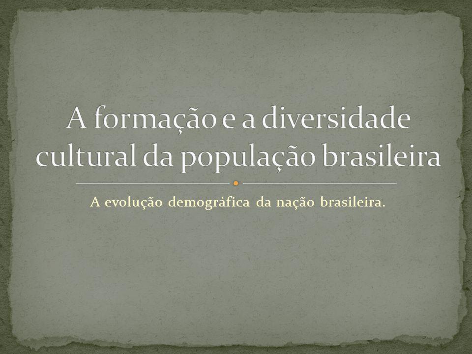 A formação e a diversidade cultural da população brasileira