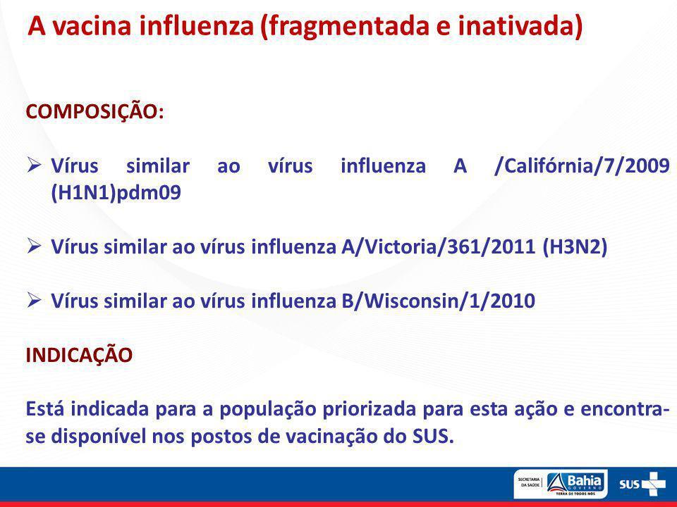 A vacina influenza (fragmentada e inativada)