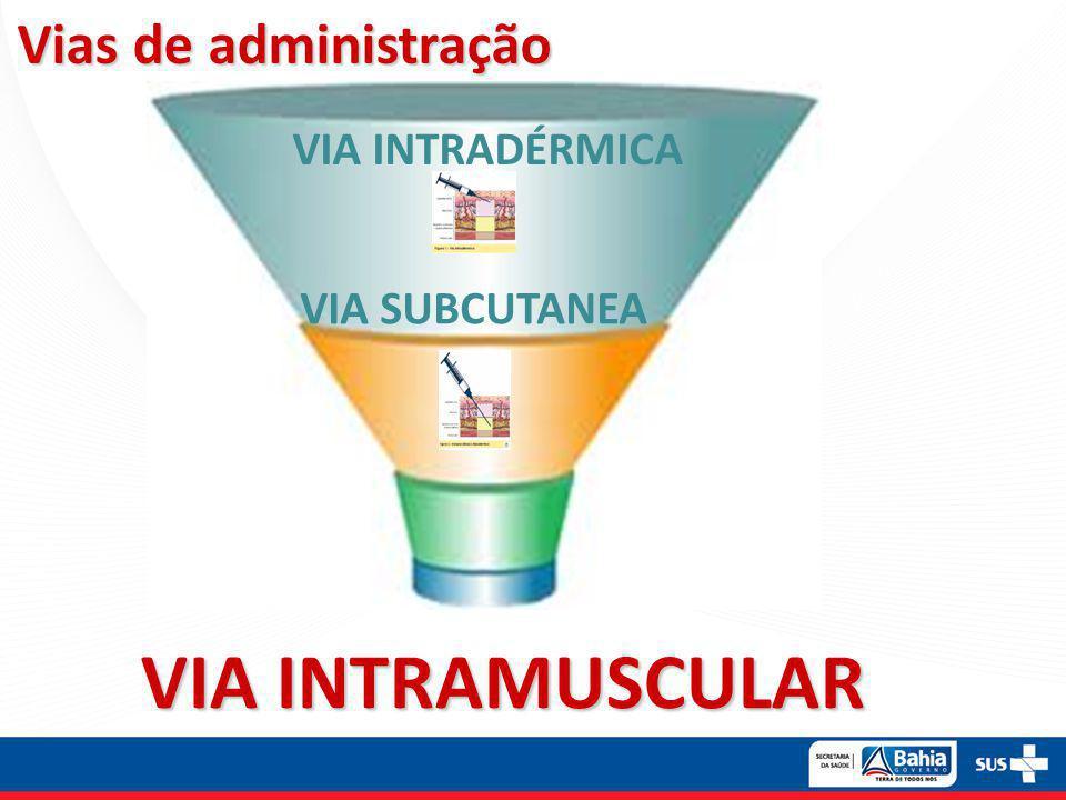 VIA INTRAMUSCULAR Vias de administração VIA INTRADÉRMICA