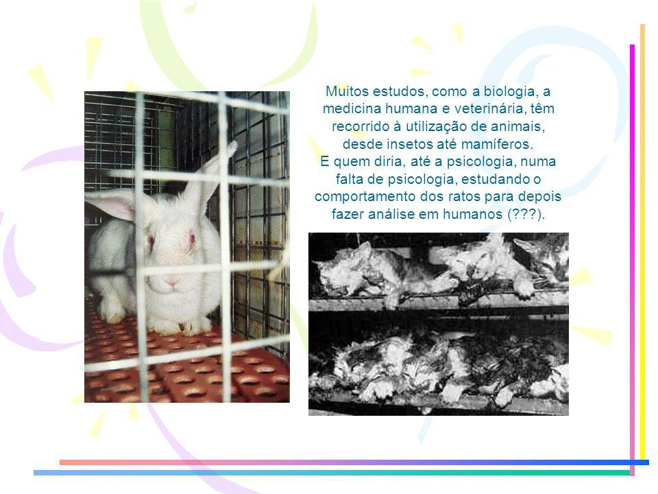 Muitos estudos, como a biologia, a medicina humana e veterinária, têm recorrido à utilização de animais, desde insetos até mamíferos.