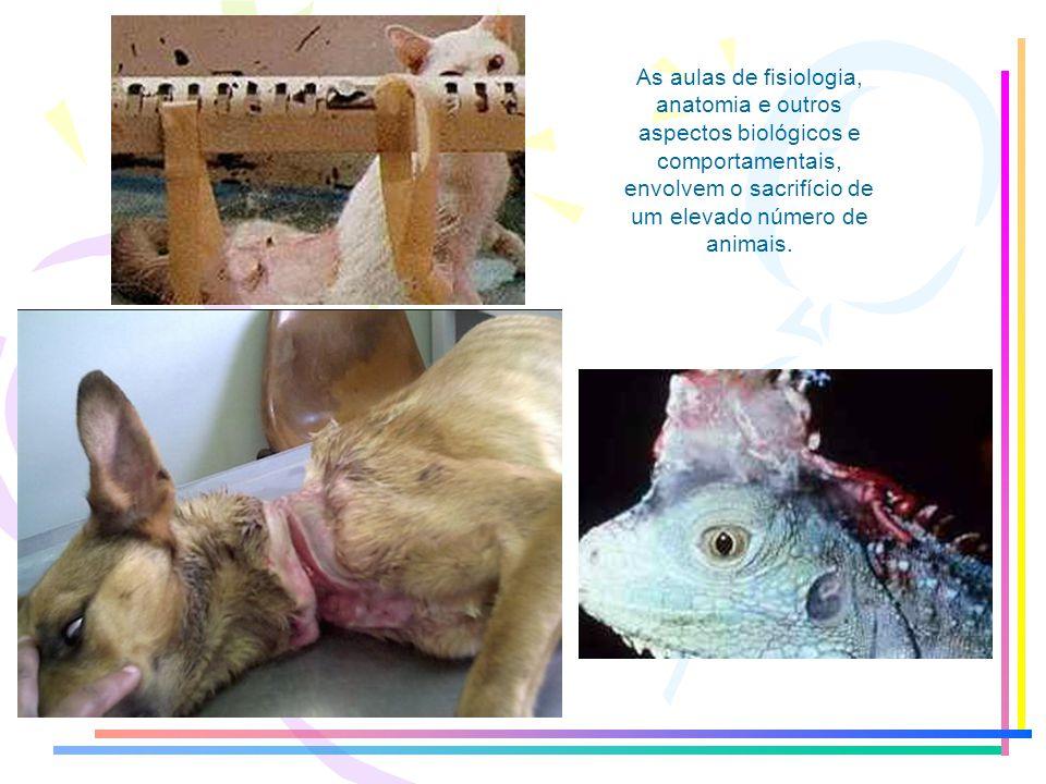 As aulas de fisiologia, anatomia e outros aspectos biológicos e comportamentais, envolvem o sacrifício de um elevado número de animais.