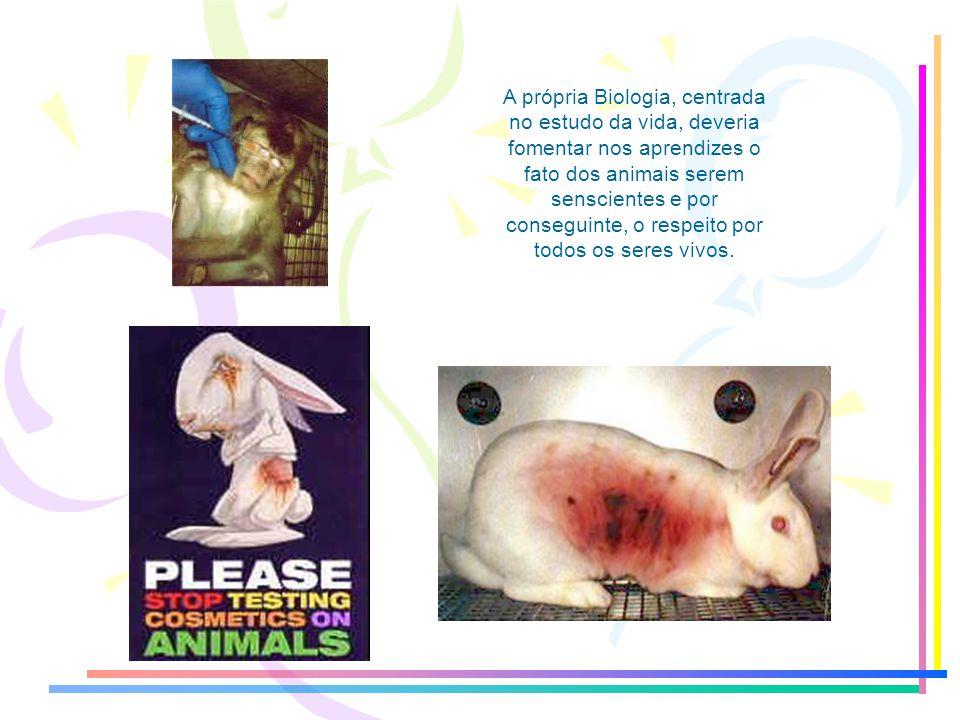A própria Biologia, centrada no estudo da vida, deveria fomentar nos aprendizes o fato dos animais serem senscientes e por conseguinte, o respeito por todos os seres vivos.