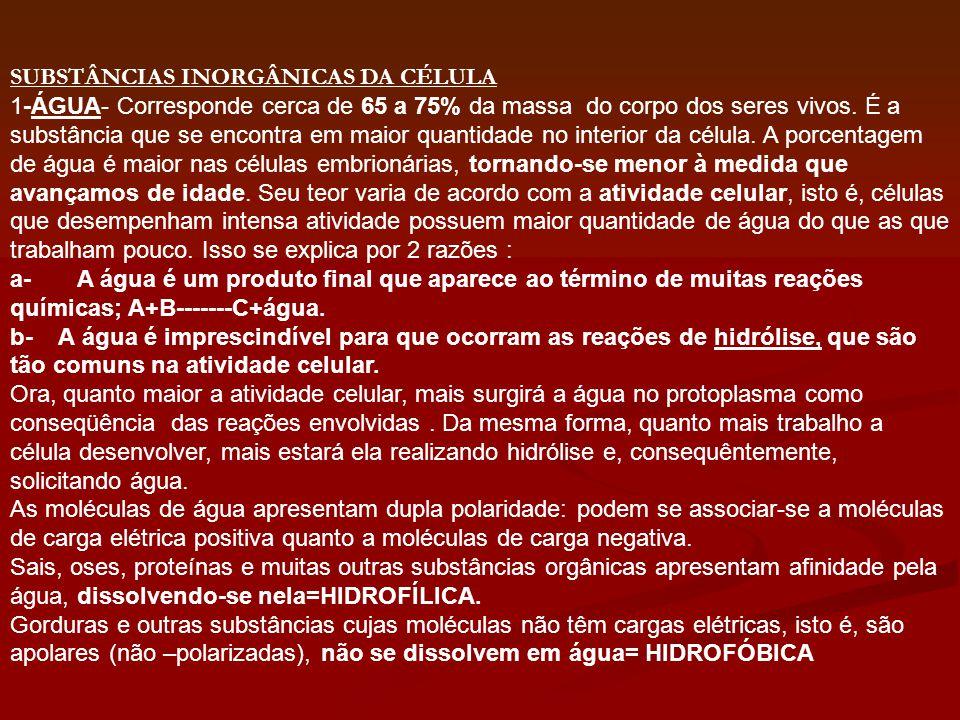 SUBSTÂNCIAS INORGÂNICAS DA CÉLULA