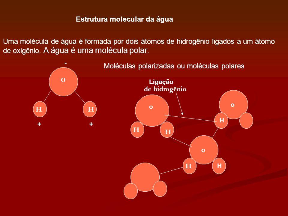 o Estrutura molecular da água