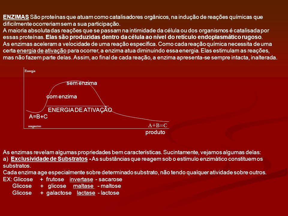EX: Glicose + frutose invertase - sacarose