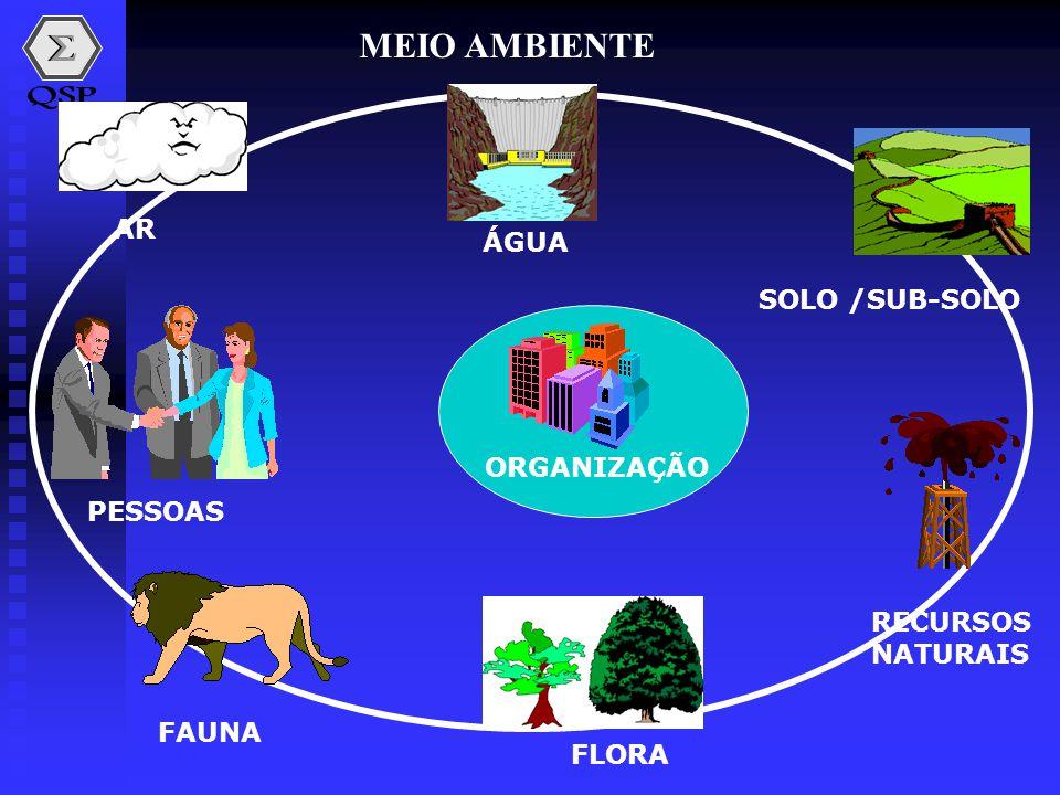 MEIO AMBIENTE AR ÁGUA SOLO /SUB-SOLO ORGANIZAÇÃO PESSOAS RECURSOS