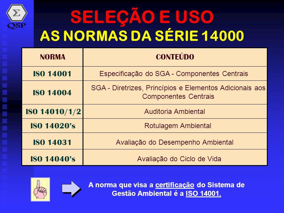 SELEÇÃO E USO AS NORMAS DA SÉRIE 14000