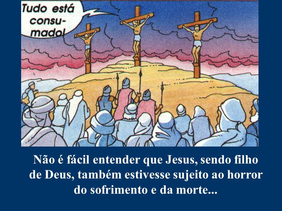 Não é fácil entender que Jesus, sendo filho de Deus, também estivesse sujeito ao horror do sofrimento e da morte...