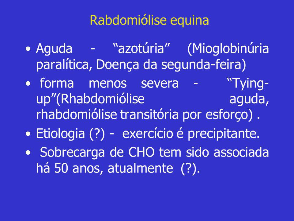Rabdomiólise equina Aguda - azotúria (Mioglobinúria paralítica, Doença da segunda-feira)