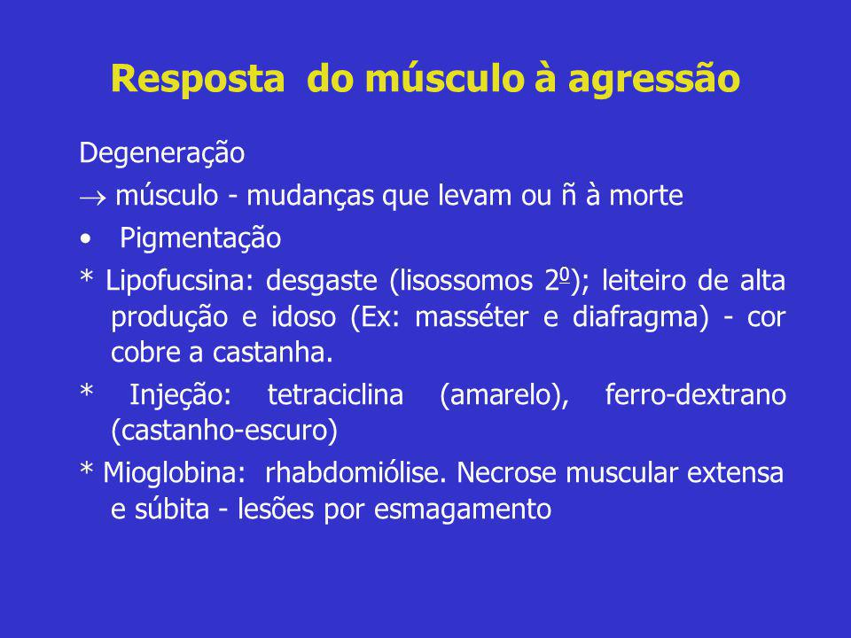 Resposta do músculo à agressão