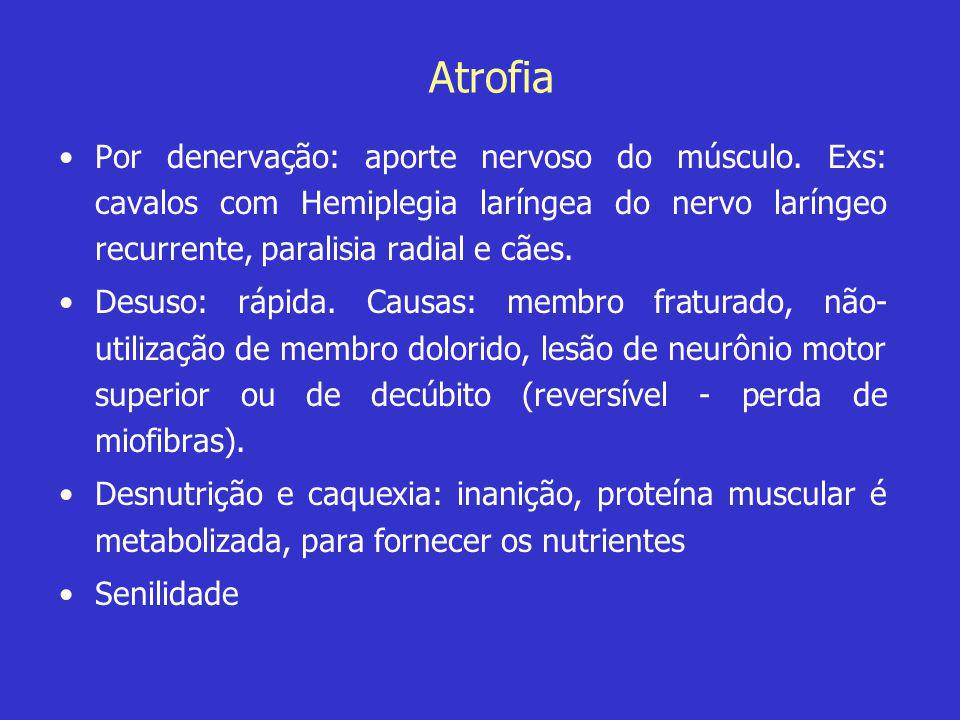 Atrofia Por denervação: aporte nervoso do músculo. Exs: cavalos com Hemiplegia laríngea do nervo laríngeo recurrente, paralisia radial e cães.