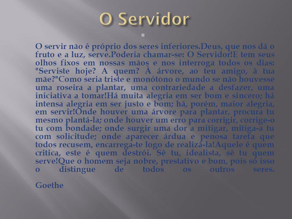 O Servidor