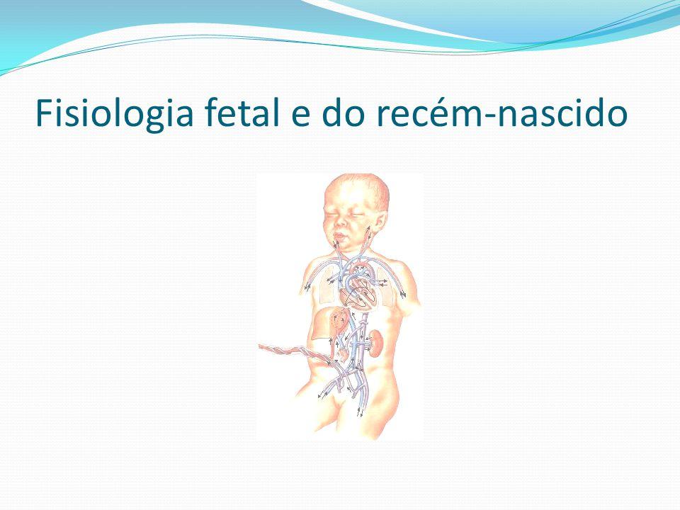 Fisiologia fetal e do recém-nascido