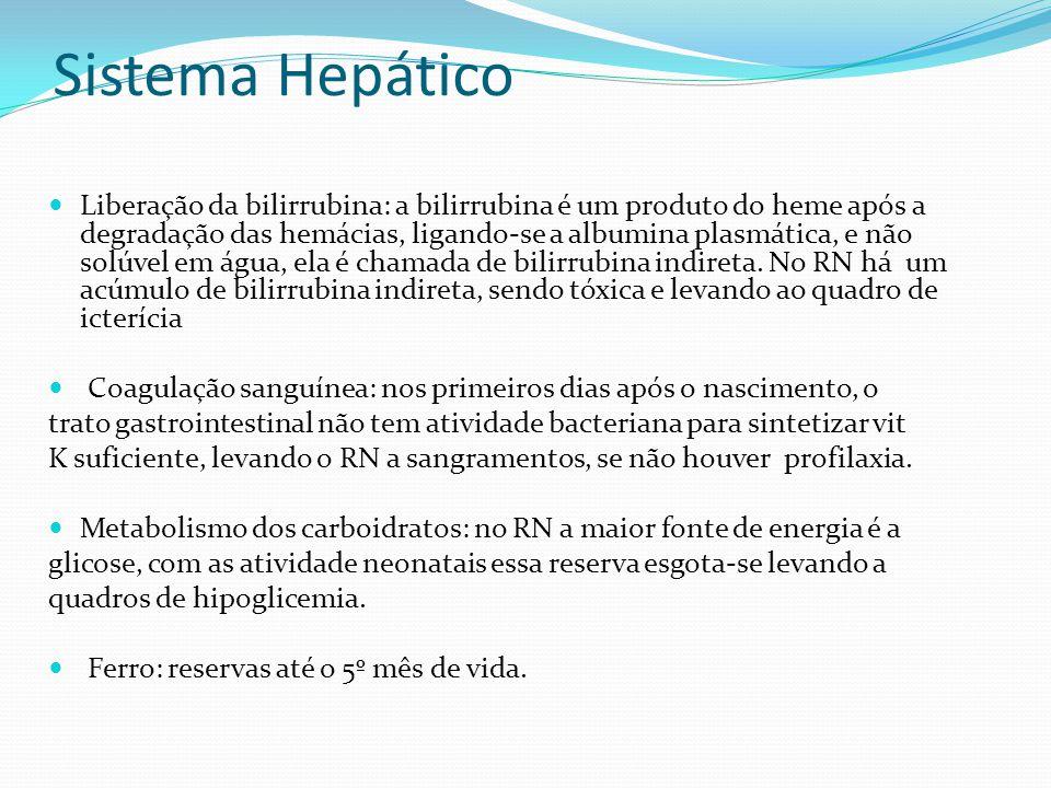 Sistema Hepático