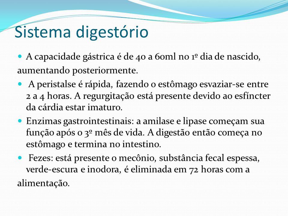 Sistema digestório A capacidade gástrica é de 40 a 60ml no 1º dia de nascido, aumentando posteriormente.