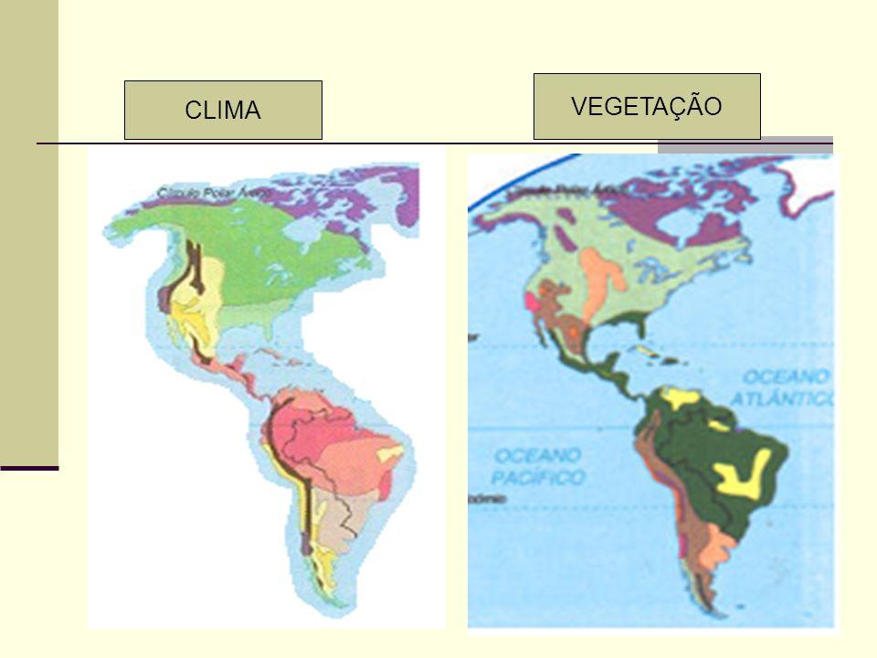 VEGETAÇÃO CLIMA