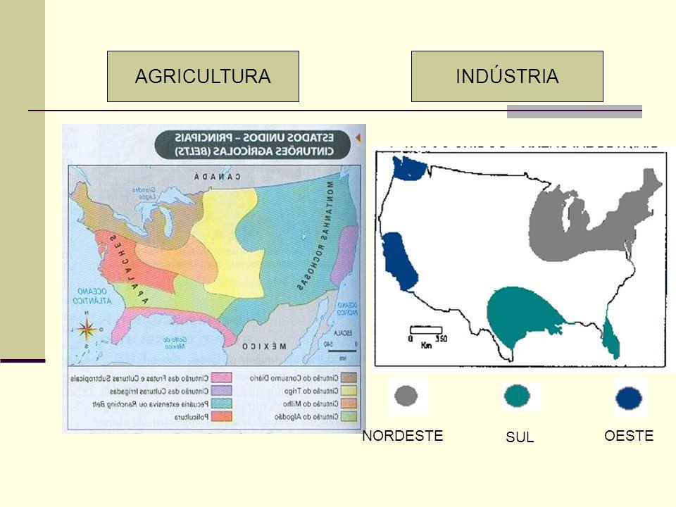 AGRICULTURA INDÚSTRIA NORDESTE SUL OESTE
