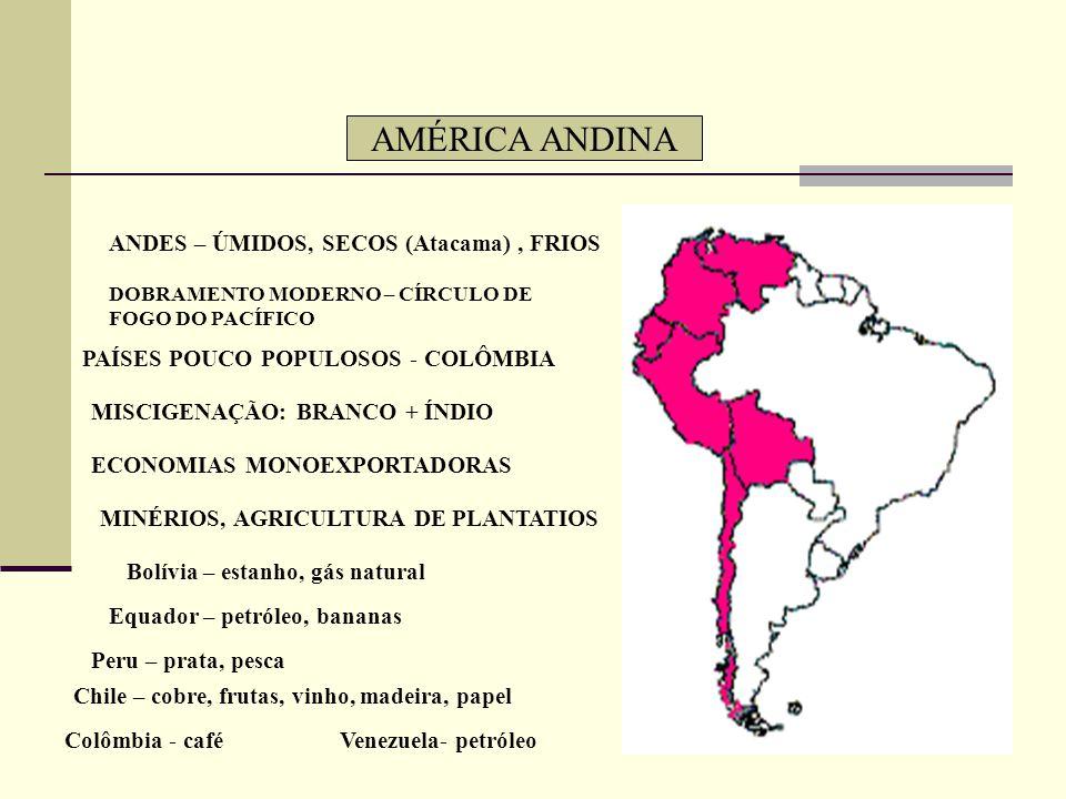AMÉRICA ANDINA ANDES – ÚMIDOS, SECOS (Atacama) , FRIOS