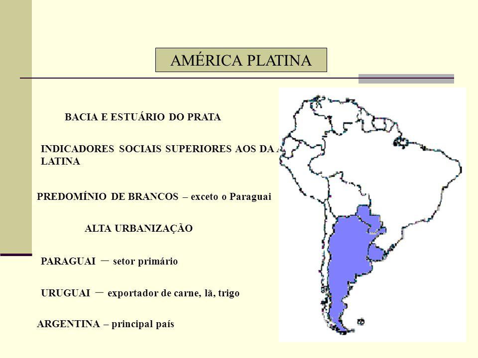 AMÉRICA PLATINA BACIA E ESTUÁRIO DO PRATA