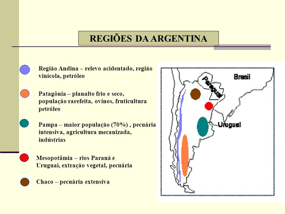 REGIÕES DA ARGENTINA Região Andina – relevo acidentado, região vinícola, petróleo.