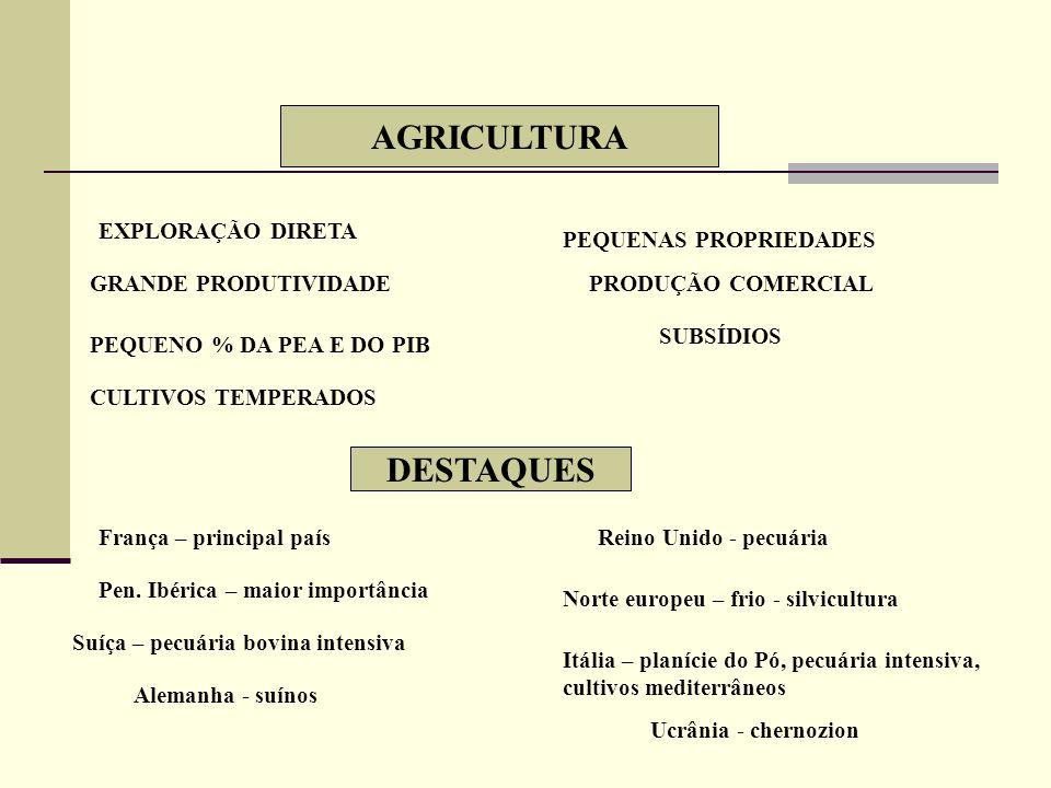 AGRICULTURA DESTAQUES