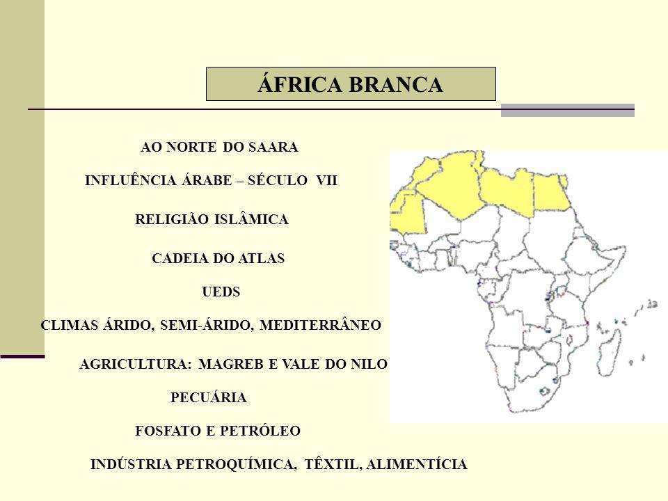 ÁFRICA BRANCA AO NORTE DO SAARA INFLUÊNCIA ÁRABE – SÉCULO VII