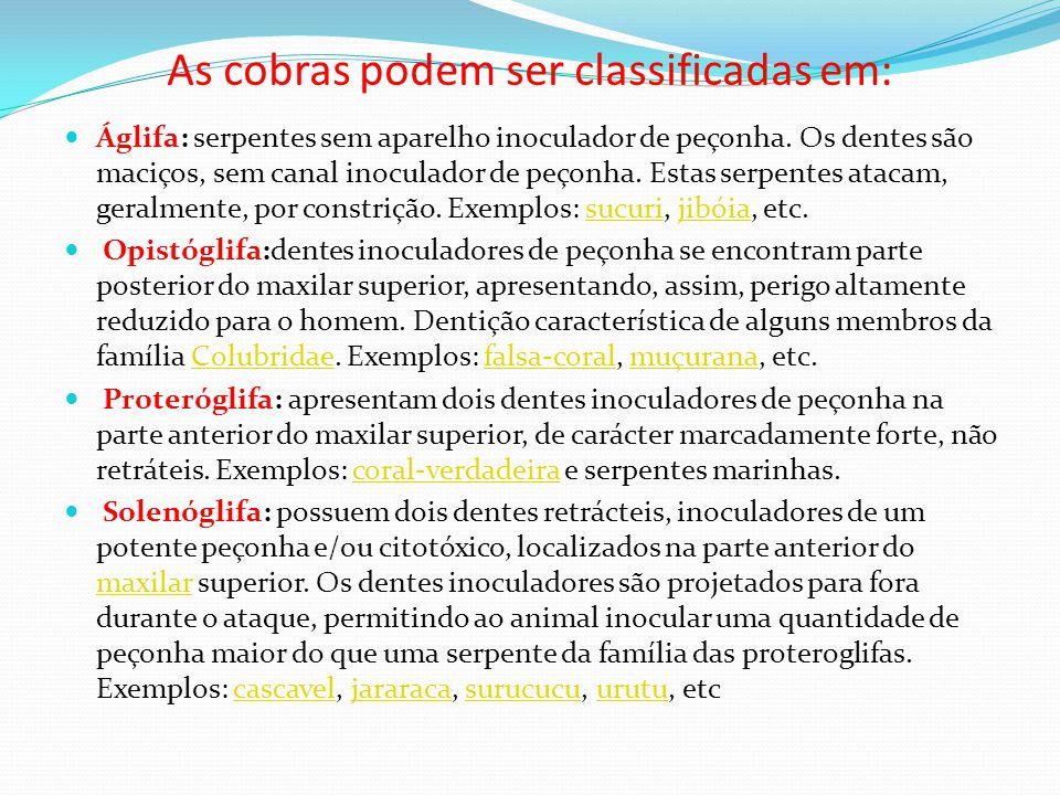 As cobras podem ser classificadas em: