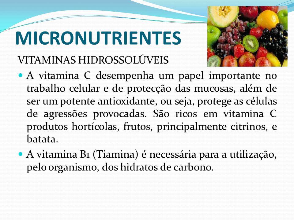 MICRONUTRIENTES VITAMINAS HIDROSSOLÚVEIS