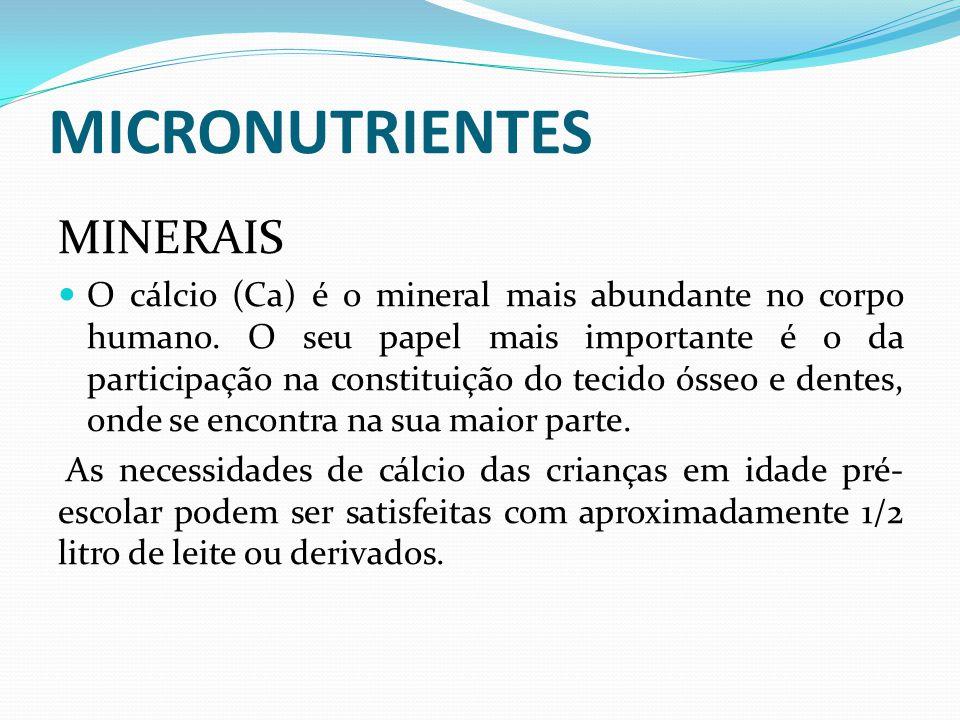 MICRONUTRIENTES MINERAIS