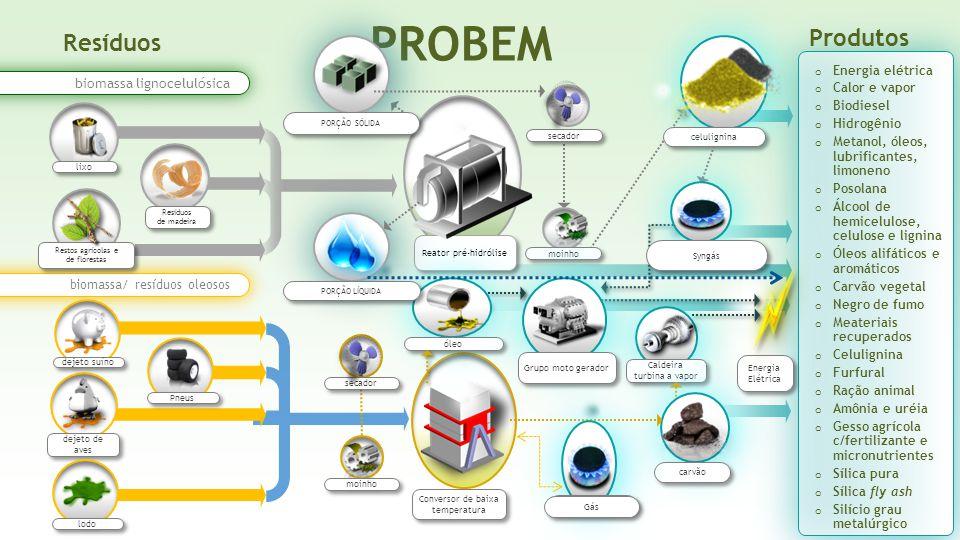PROBEM Produtos Resíduos Energia elétrica biomassa lignocelulósica