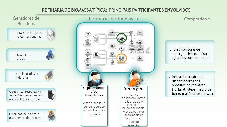 REFINARIA DE BIOMASSA TÍPICA: PRINCIPAIS PARTICIPANTES ENVOLVIDOS