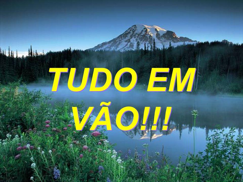 TUDO EM VÃO!!!