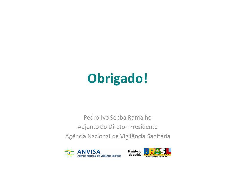 Obrigado! Pedro Ivo Sebba Ramalho Adjunto do Diretor-Presidente