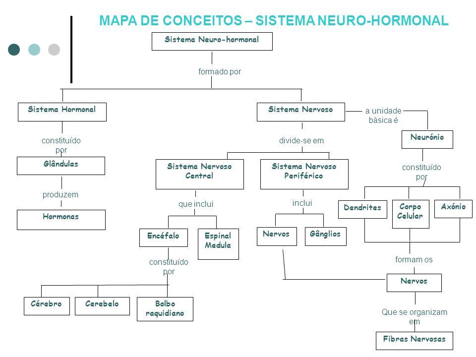 MAPA DE CONCEITOS – SISTEMA NEURO-HORMONAL