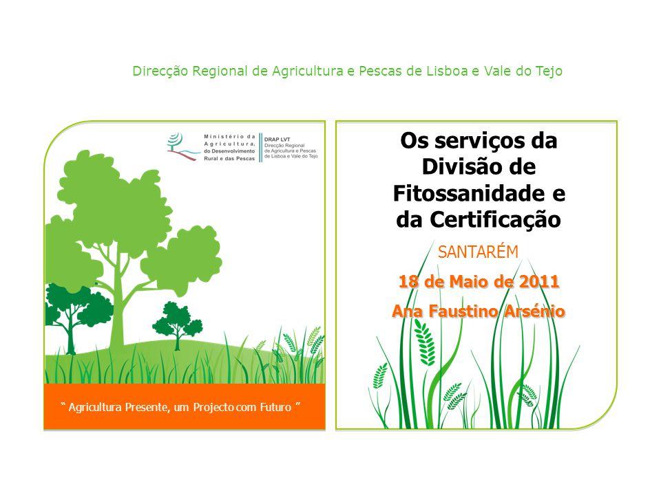 Os serviços da Divisão de Fitossanidade e da Certificação