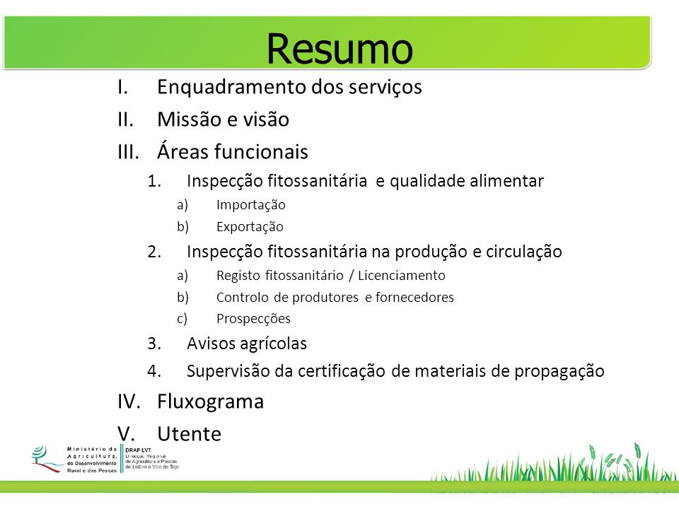 Resumo Enquadramento dos serviços Missão e visão Áreas funcionais