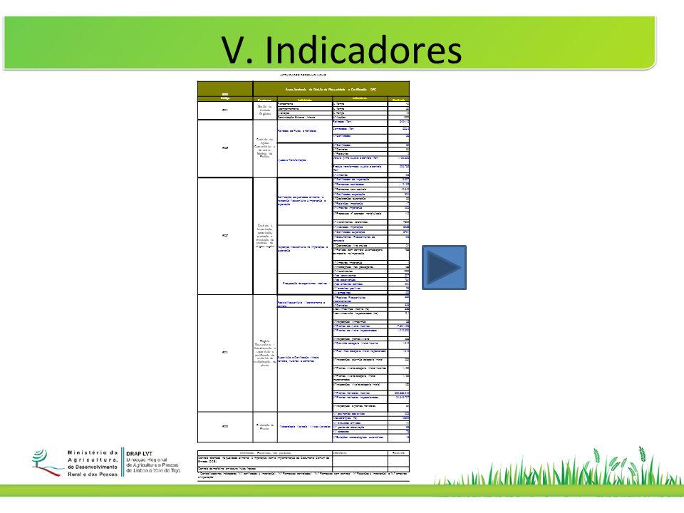 V. Indicadores ACTIVIDADES DESENVOLVIDAS 6300