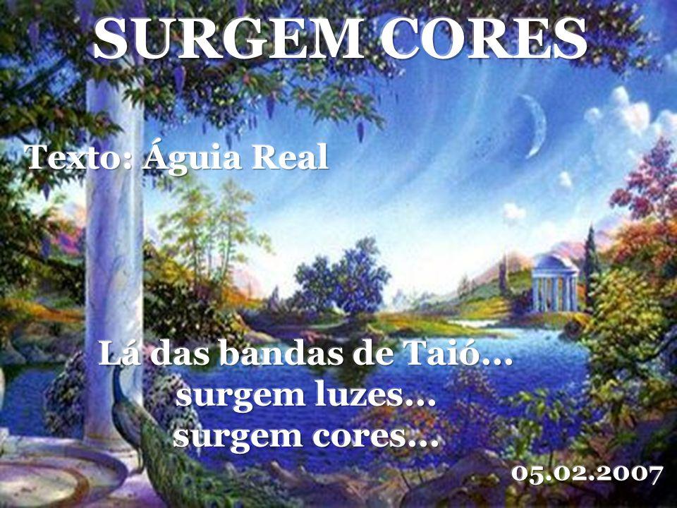 SURGEM CORES Texto: Águia Real Lá das bandas de Taió...