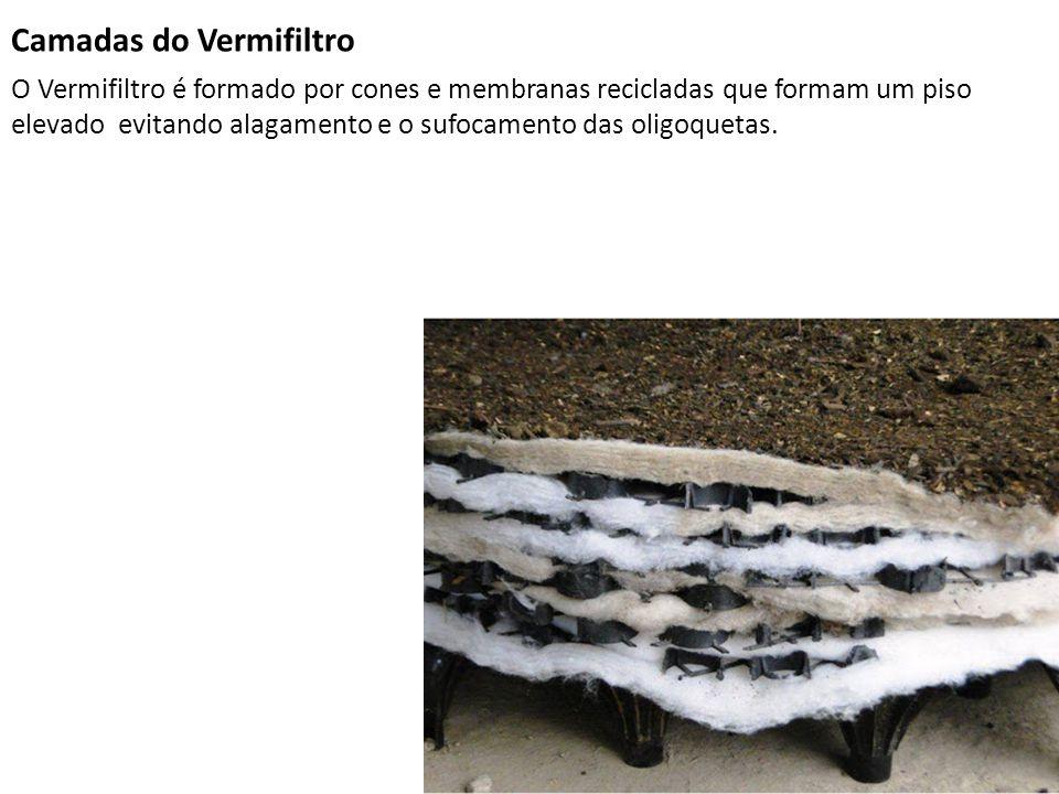 Camadas do Vermifiltro