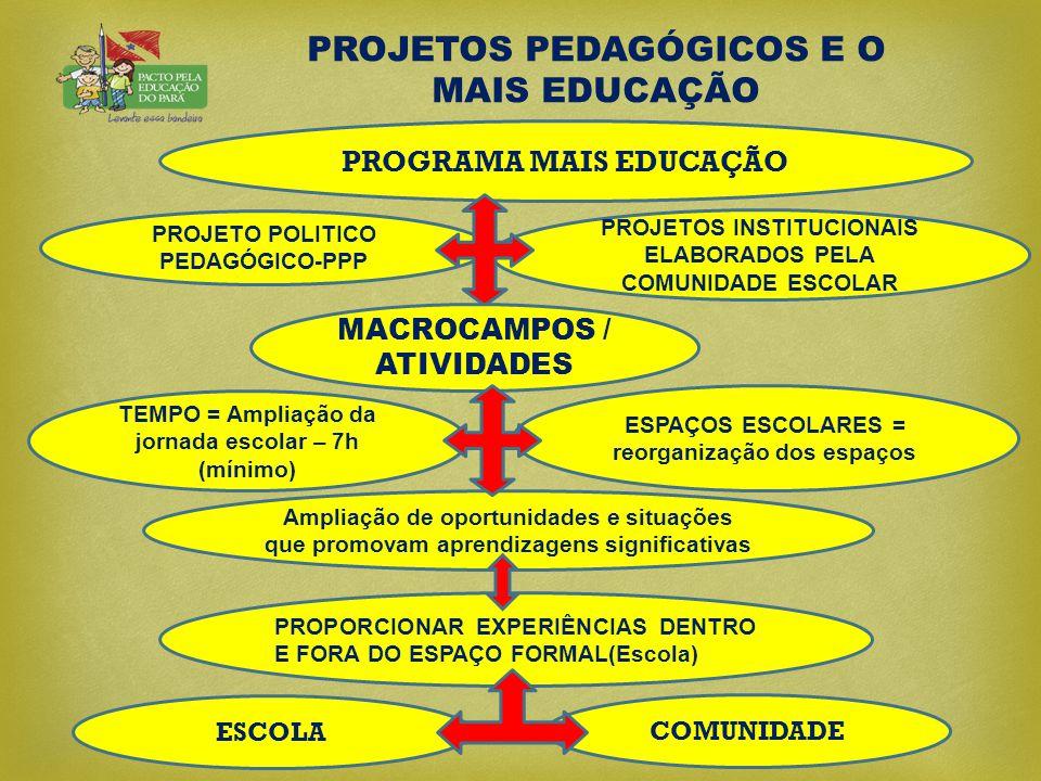 PROJETOS PEDAGÓGICOS E O MAIS EDUCAÇÃO