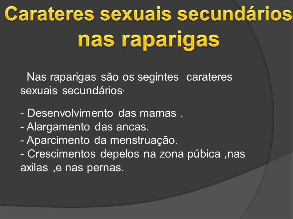 Carateres sexuais secundários